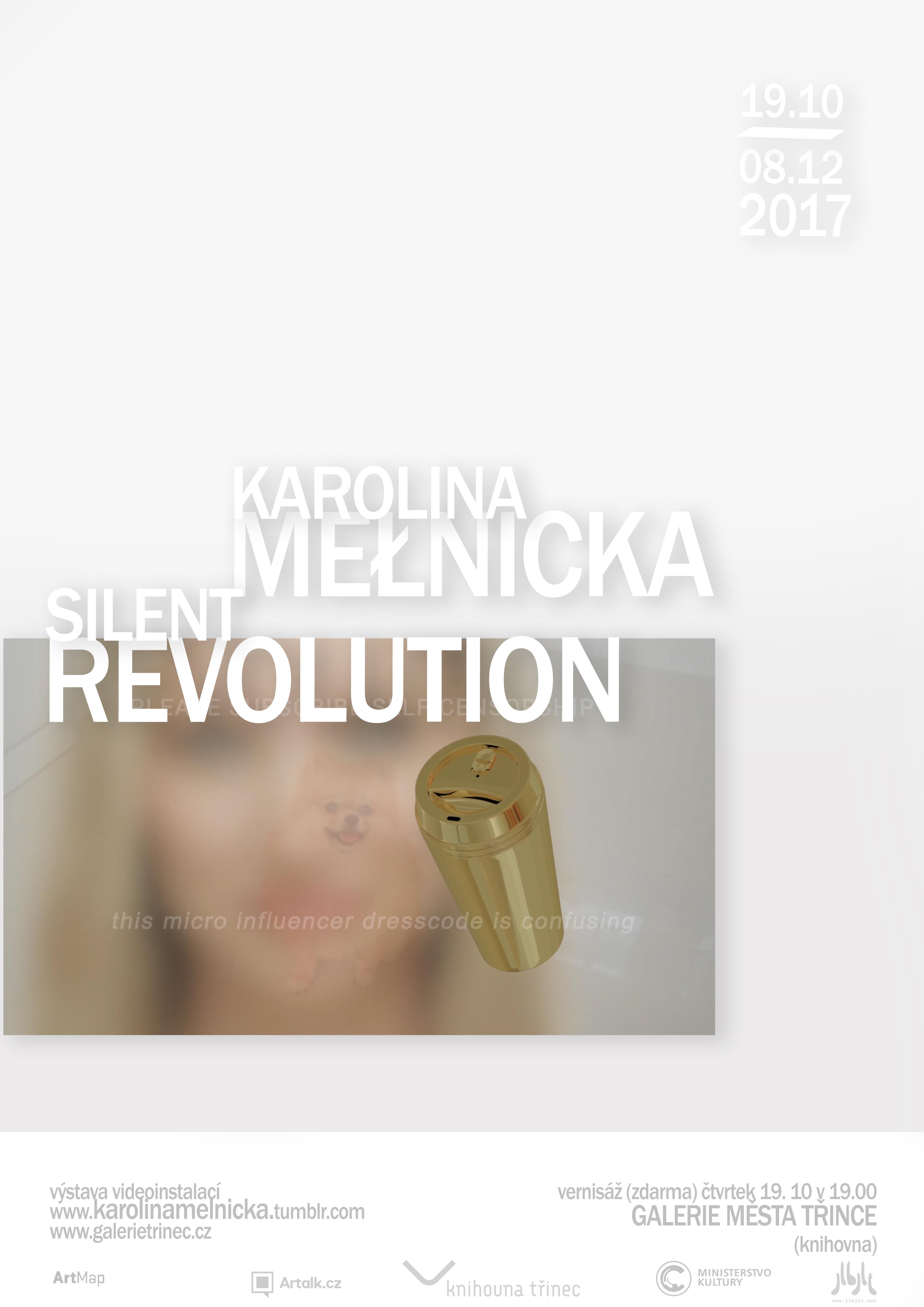 Karolina Mełnicka: Silent Revolution
