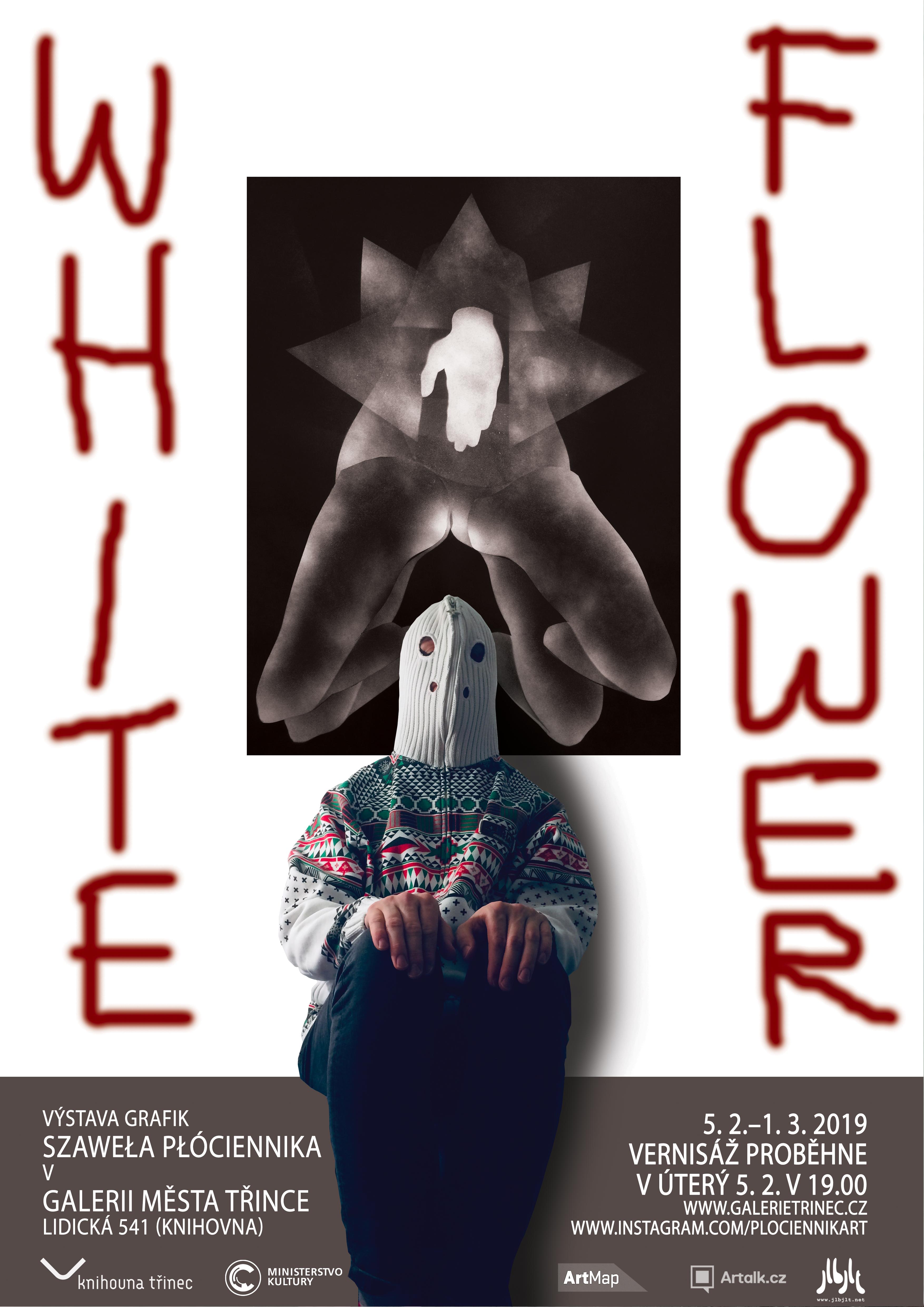 Szaweł Płóciennik: White flower